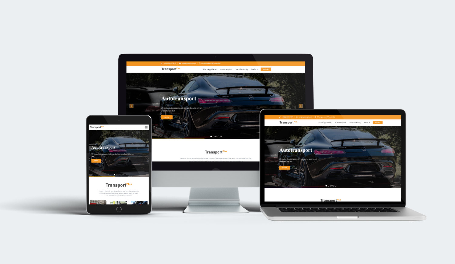Transport plus website